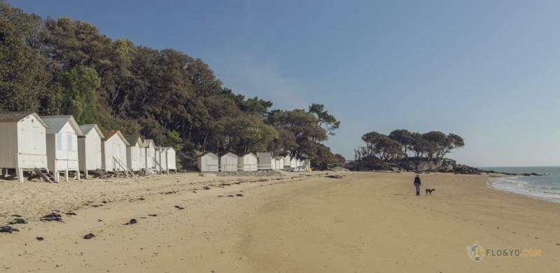 Ile de Noirmoutier en van aménagé (1 sur 1)-16