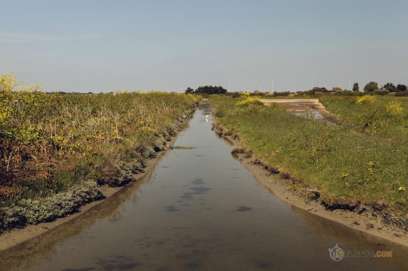 Ile de Noirmoutier en van aménagé (1 sur 1)-39