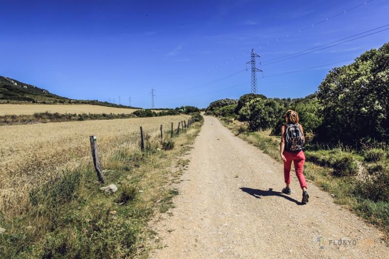 Vantrip en Espagne : visite en terre de Navarre
