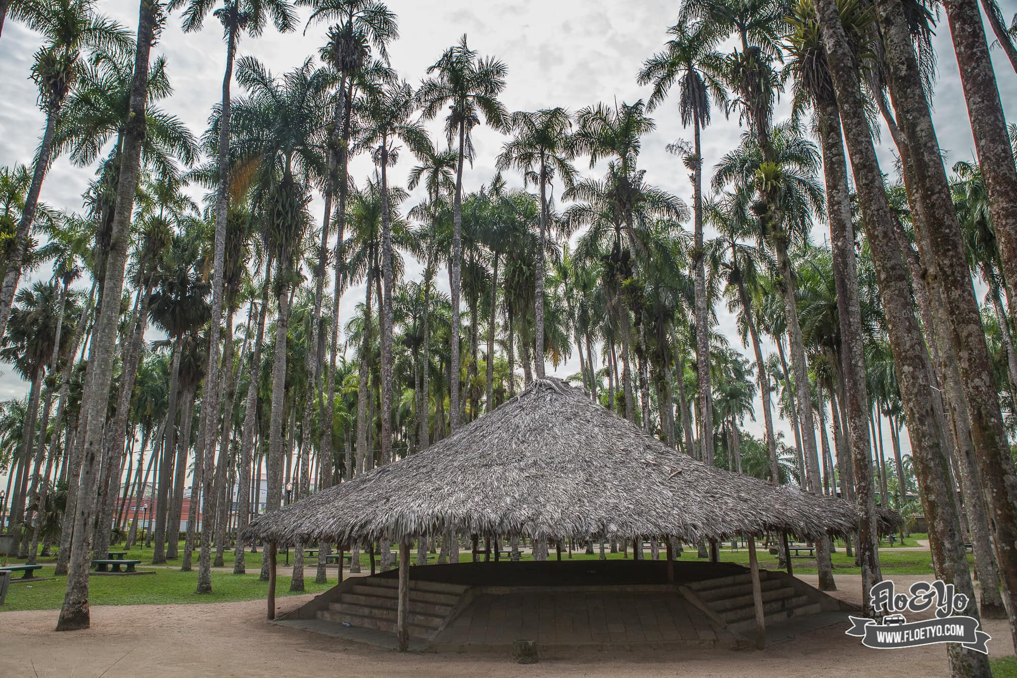 Paramaribo-5399